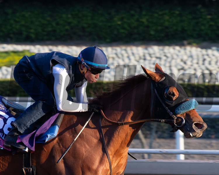 Fair Maiden<br /> at  Oct. 27, 2019 Santa Anita in Arcadia, CA.