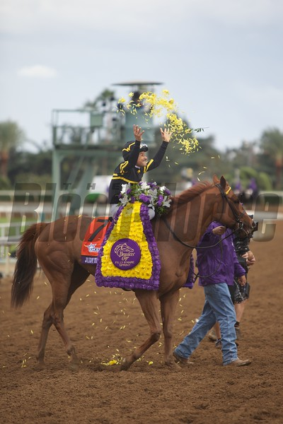 Mike Smith celebrated winning the Breeders' Cup Filly & Mare Sprint (G. I) atop Judy the Beauty on November 1, 2014.