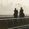 Caption:  foggy morning<br /> Breeders' Cup horses and connections at Santa Anita near Acadia, California, preparing for Breeders' Cup raceways on Nov. 1 and Nov. 2, 2013.<br /> BCWorks01_10_26_13 RAWimage642<br /> Photo by Anne M. Eberhardt