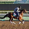 Twilight Eclipse Breeders' Cup Turf Chad B. Harmon