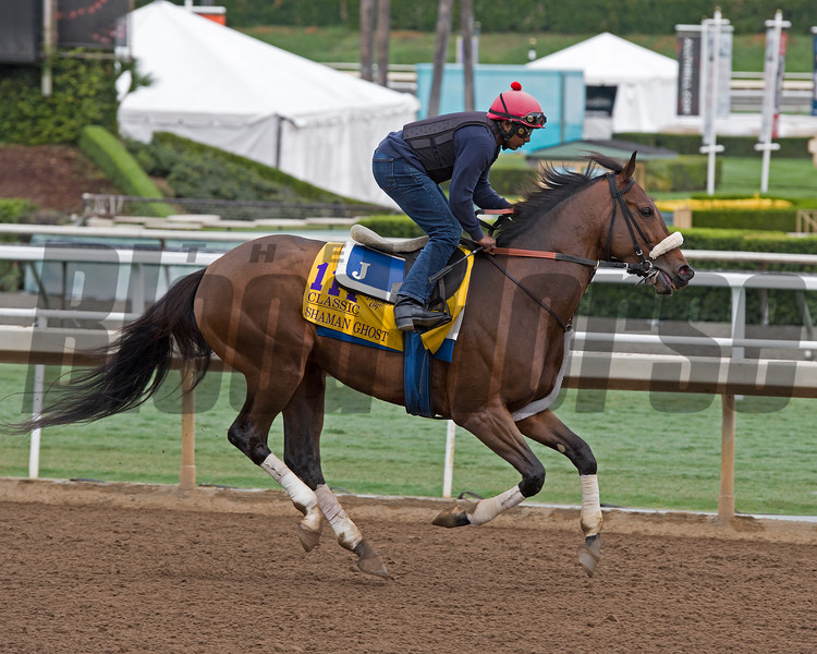Shaman Ghost, Classic.<br /> Works at Santa Anita in preparation for 2016 Breeders' Cup on Oct. 29 2016, in Arcadia, CA.