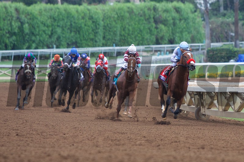 Goldencents, Rafael Bejerano aboard, round the turn to win the Breeders' Cup Dirt Mile (G. I).