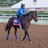 Happy Mesa<br /> Works at Santa Anita in preparation for 2016 Breeders' Cup on Oct. 29 2016, in Arcadia, CA.