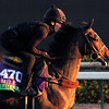 Limato Breeders' Cup Mile Chad B. harmon
