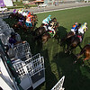 The field leaving the starting gate in the Breeders' cup Juvenile Fillies Turf at Santa Anita on 11/4/16