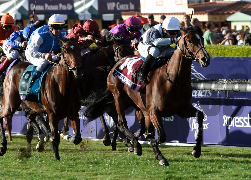 Karakontie wins the Breeders Cup Mile.  Photo by Skip Dickstein