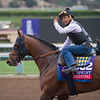 Works at Santa Anita in preparation for 2016 Breeders' Cup on Oct. 30, 2016, in Arcadia, CA.