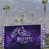 Breeders' Cup Scenes at Santa Anita Park on October 31, 2019. Photo By: Chad B. Harmon