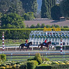 l-r, Full Flat and Matera Sky<br /> Horses and scenes at  Oct. 26, 2019 Santa Anita in Arcadia, CA.