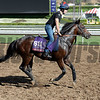 Caption:  Caspar Netscher<br /> Scenes at Santa Anita in preparation for Breeders' Cup  in California on Oct. 27, 2014.<br /> 2Origs10_27_14 image068<br /> Photo by Anne M. Eberhardt
