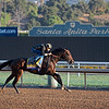 McKinzie<br /> at  Oct. 28, 2019 Santa Anita in Arcadia, CA.