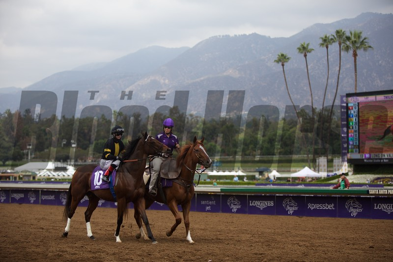 Long On Value, with Rosie Napravnik aboard, before the Twilight Derby (G. II) at Santa Anita on October 31, 2014.