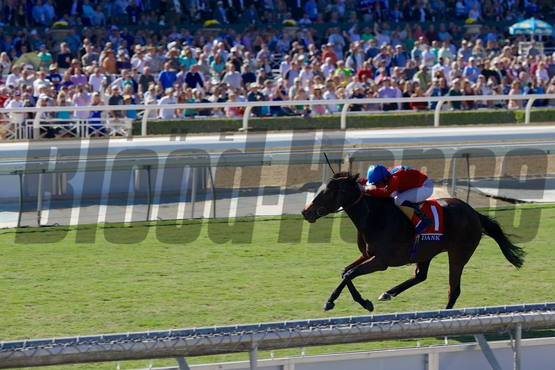 Dank, Ryan Moore up, led the field down the stretch in the Filly & Mare Turf (G. I). Photo by Crawford Ifland.