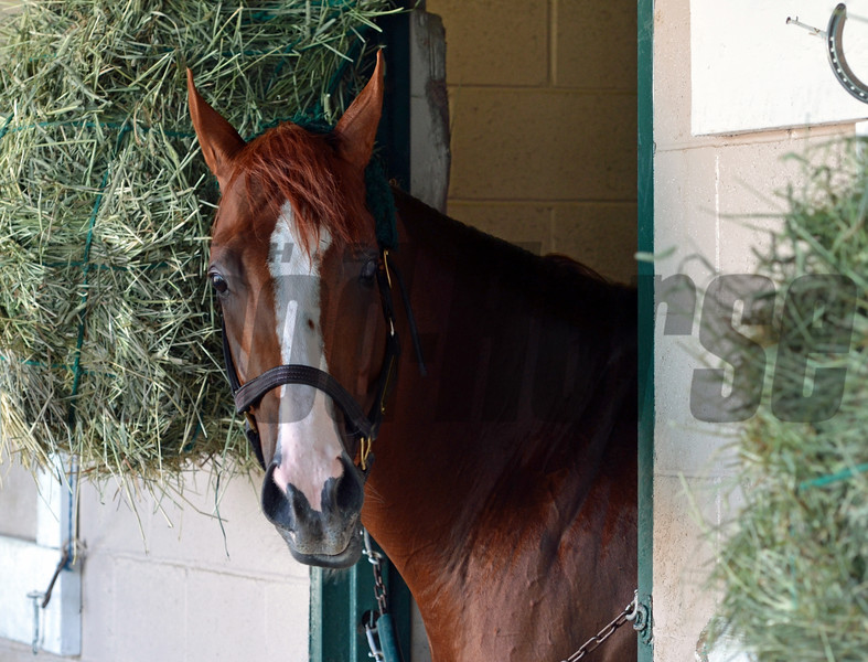 California Chrome Sweet