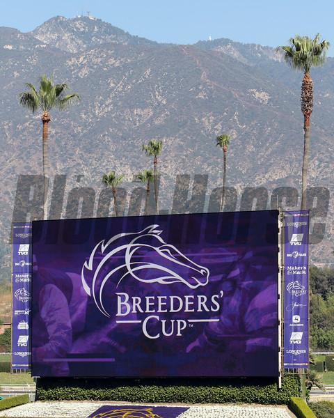 Breeders' Cup Scenes at Santa Anita Park on October 31, 2019. Photo By: Chad B. Harmon