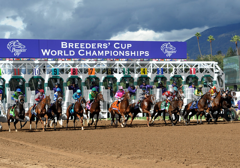 Take Charge Brandi wins the 2014 Breeders' Cup Juvenile Fillies.<br /> Dave Harmon Photo.