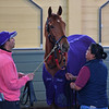 Madame Dancealot Schooling at Santa Anita. asst trainer David Meah on left.<br /> Works at Santa Anita in preparation for 2016 Breeders' Cup on Oct. 30, 2016, in Arcadia, CA.