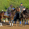 Caption:  Iotapa<br /> Scenes at Santa Anita  on Oct. 27, 2014, in preparation for Breeders' Cup  in California.<br /> 1Origs10_28_14 image248<br /> Photo by Anne M. Eberhardt