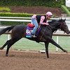 Harbour Master, Juvenile Turf.<br /> Works at Santa Anita in preparation for 2016 Breeders' Cup on Oct. 29 2016, in Arcadia, CA.