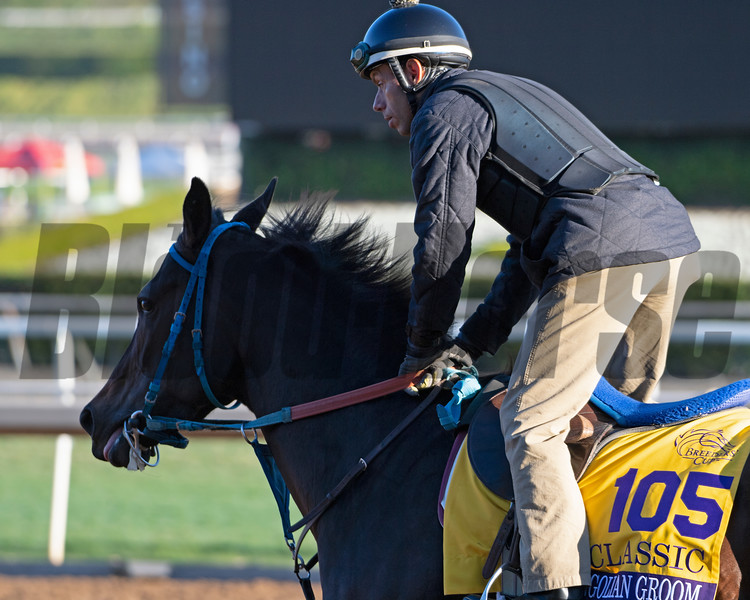 Mongolian Groom<br /> Horses and scenes at  Oct. 26, 2019 Santa Anita in Arcadia, CA.