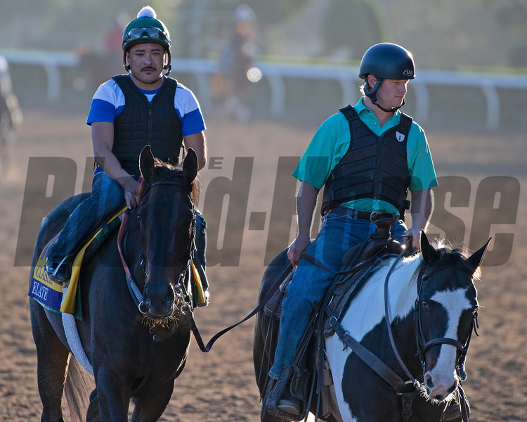 Elate, with Riley Mott on Paintball<br /> Horses and scenes at  Oct. 26, 2019 Santa Anita in Arcadia, CA.