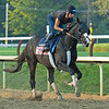 Masqueparade<br /> Horses in training during Travers week in Saratoga on Aug. 26, 2021.