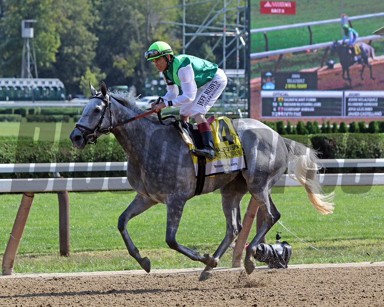Significant Form with John Velazquez after winning the 31st Running of The Ballston Spa (GII) at Saratoga on August 24, 2019. Photo By: Chad B. Harmon
