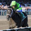 Boys at Tosconova wins the Hopeful.<br /> Coglianese Photos