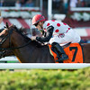 Holding Gold wins the Quick Call Stakes at Saratoga Aug. 4, 2016.<br /> Coglianese Photos/Chelsea Durand