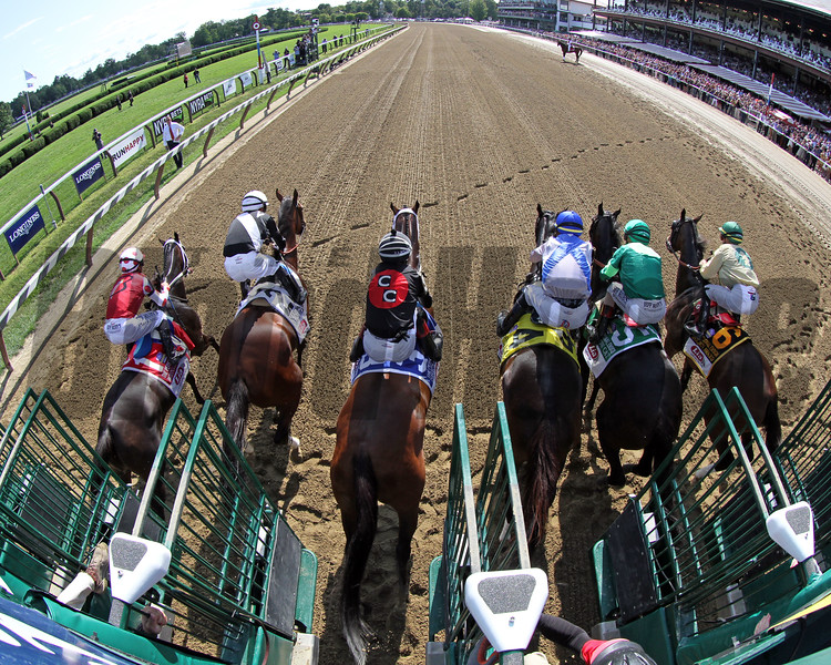 The start of the 72nd Running of The Personal Ensign (GI) at Saratoga on August 24, 2019. Photo By: Chad B. Harmon