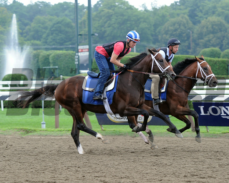 Jess's Dream gallops at Saratoga Race Course on August 4, 2014.<br /> Coglianese Photos/Adam Mooshian