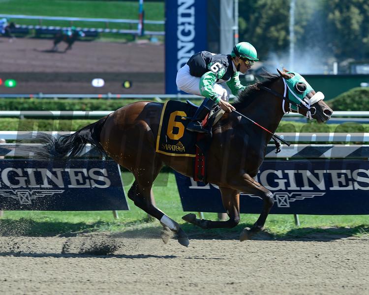 Myfourchix wins the Seeking the Ante at Saratoga 8/24/2014.<br /> Coglianese Photos
