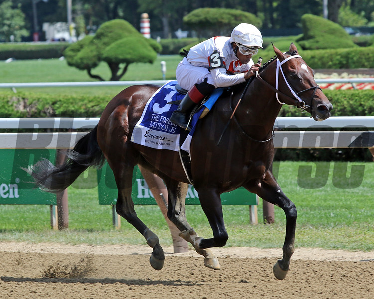 Mitole with Ricardo Santana Jr. win the 40th Running of The Forego (GI) at Saratoga on August 24, 2019. Photo By: Chad B. Harmon