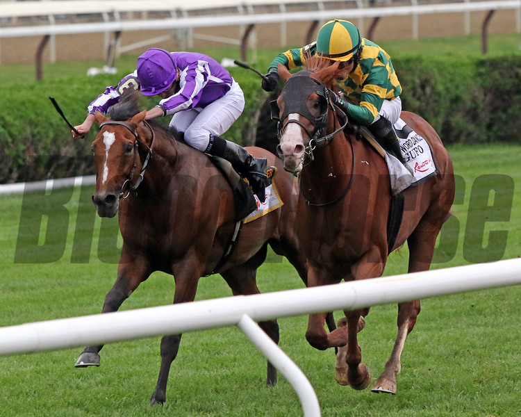 Gufo with Joel Rosario win the 47th Running of The Sword Dancer (GI) over Japan with Ryan Moore at Saratoga on August 28, 2021. Photo By: Chad B. Harmon