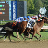 Practical Joke wins the Hopeful Stakes (gr. I) at Saratoga Sept. 5, 2016.<br /> Coglianese Photos