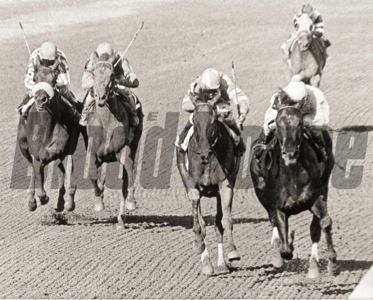 #4 Love Sign wins the Alabama Stakes at Saratoga on August 9, 1980.<br /> Photo by Bob Coglianese/NYRA