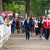 Gamine in paddock before the Ketel One Ballerina Handicap (G1) at Saratoga Race Course in Saratoga Springs, N.Y., on Aug. 28, 2021.