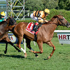 Wise Dan wins the Fourstardave Handicap (gr. 2)<br /> Jockey: John Velazquez<br /> SARATOGA, Saratoga Springs, NY<br /> Purse: $500,000<br /> Date: August 10, 2013<br /> Class: Grade 2<br /> TV: HRTV/TVG<br /> Age: 3 yo's & up<br /> Race: 10<br /> Distance: One Mile<br /> Post Time: 5:45 PM<br /> Photo by: Adam Coglianese/NYRA