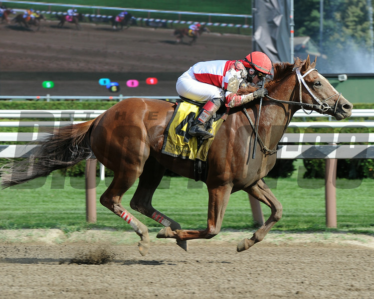 Fox Hill Farms' Coup de Grace closed with gusto in the $200,000 Grade II Amsterdam Stakes at Saratoga Race Course, taking advantage after a quick early pace set-up in the 6 1/2-furlong sprint for his late-running style.<br /> Photo by: Adam Coglianese/NYRA
