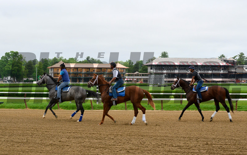 Horses trained by Kiran McLaughlin go out on the main track for the first time this season as the Main track at the Saratoga Race Course opens officially for training Thursday  June 20, 2019 in Saratoga Springs, N.Y. The 2019 season opens July 11 and runs through September 2nd.   Photo by Skip Dickstein.