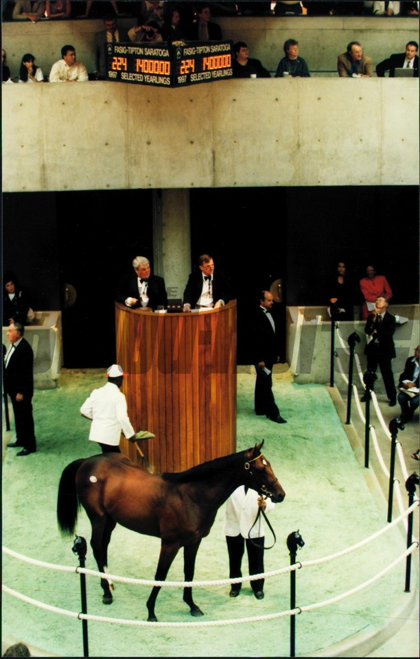 Gulch-Weekend Storm, b.c. Sales topper, at the Saratoga Sales in 1997