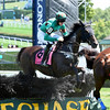 Bob Le Beau (IRE) wins the A. P. Smithwick Memorial Steeplechase S. (gr. I) at Saratoga<br /> Coglianese Photo
