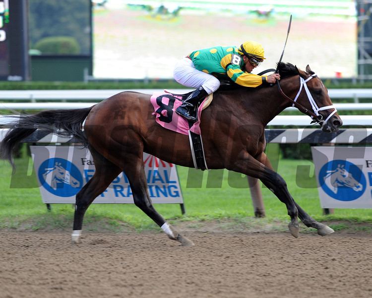 Palace Malice wins at Saratoga, first North American winner for Two-time Horse of the Year Curlin.<br /> Photo by Coglianese Photos