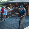 Hip 111 colt by Quality Road out of Harmonize from Brookdale<br /> Sales scenes at Fasig-Tipton in Saratoga Springs, N.Y. on Aug. 10, 2021.