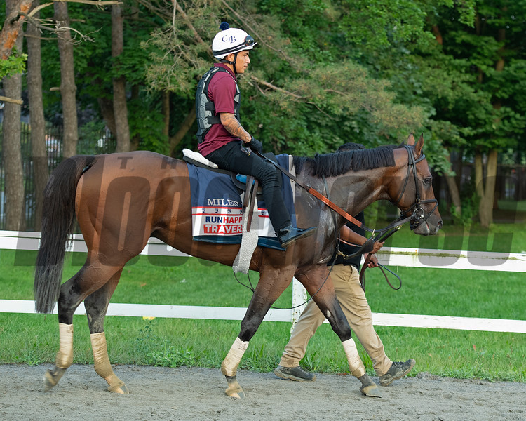 Miles D after training at main track<br /> Horses in training during Travers week in Saratoga on Aug. 26, 2021.