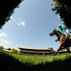 King Kreesa wins the West Point Stakes at Saratoga 8/24/2014.<br /> Coglianese Photos/Adam Mooshian