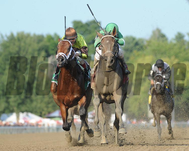 Exaggerator wins the Saratoga Special at Saratoga August 16, 2015.<br /> Coglianese Photos