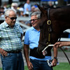 Trainer Jerry Hollendorfer, left, keeps a keen eye on Songbird as she is schooled in the paddock at the Saratoga Race Course Thursday Aug. 18, 2016 in Saratoga Springs, N.Y. for Saturday's Alabama.  Photo by Skip Dickstein