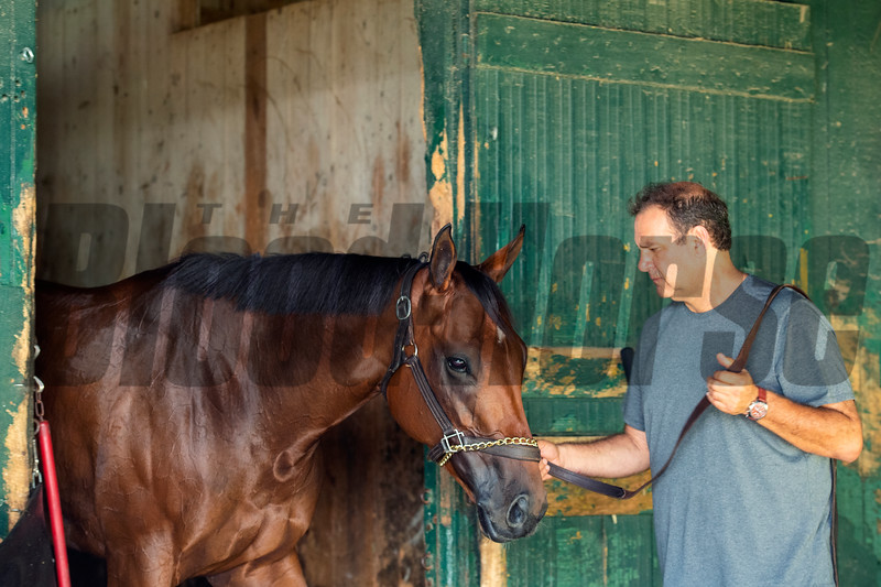Horse in stables at Saratoga Race Course in Saratoga Springs, N.Y., on Aug. 28, 2021.