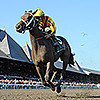 Cavorting wins the Adirondack Stakes at Saratoga 8/10/2014.<br /> Coglianese Photos